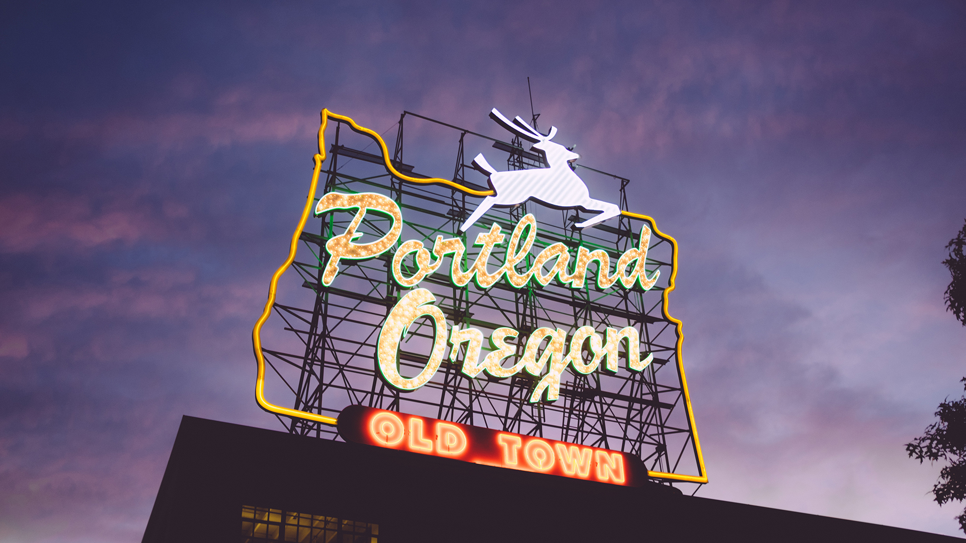Portland Airport Transportation Ride To Pdx Pdx Airport Pickup